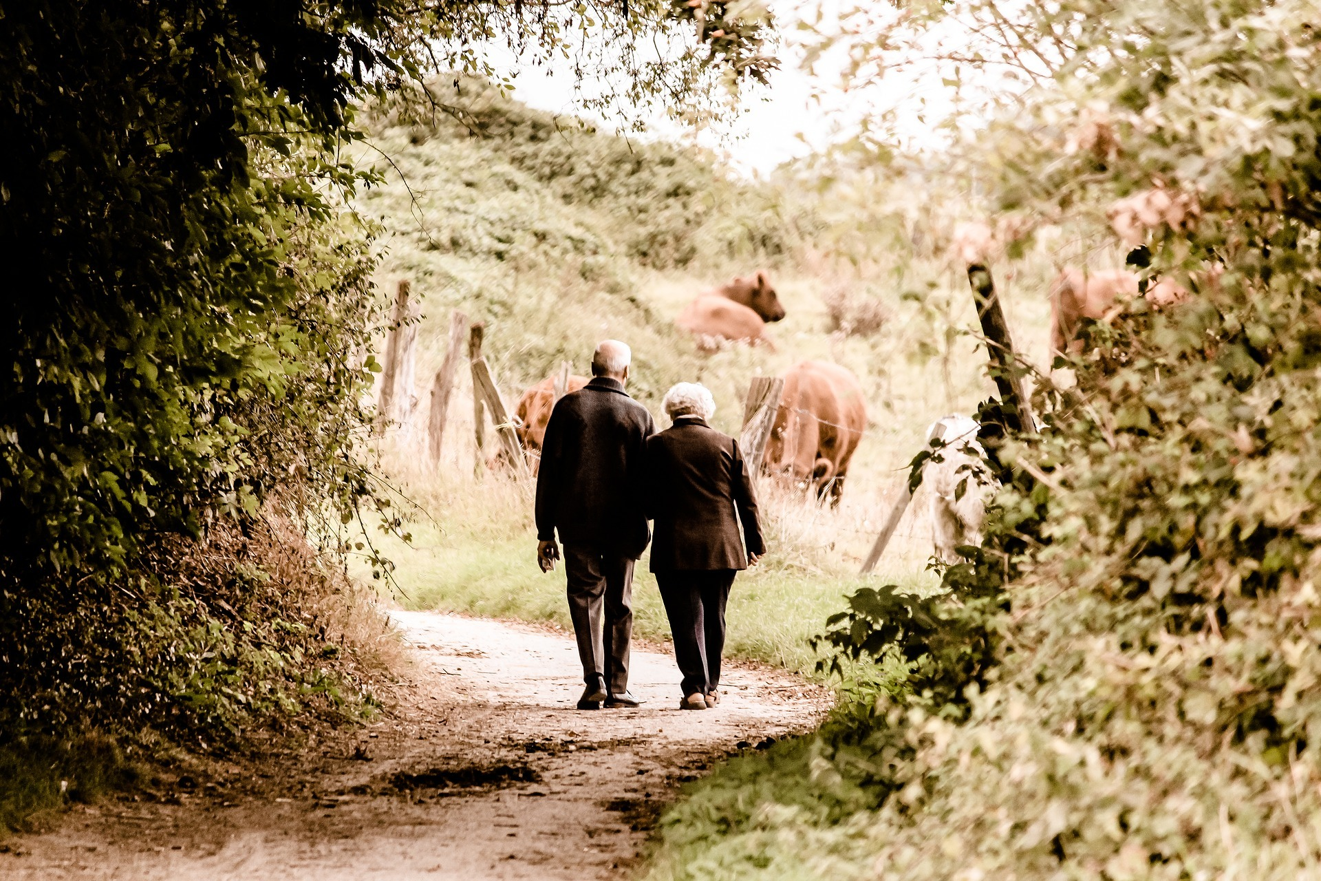 Neue Lebensinhalte finden nach der Pensionierung